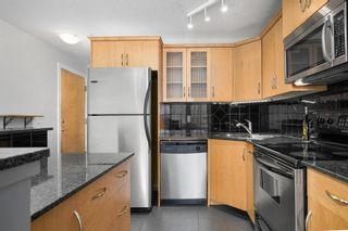 Photo 3: 212 317 19 Avenue in Calgary: Mission Apartment for sale : MLS®# A1080613