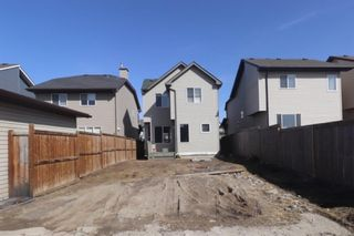 Photo 23: 69 New Brighton Green SE in Calgary: New Brighton Detached for sale : MLS®# A1087632