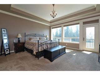 Photo 7: 2008 MERLOT Blvd in Abbotsford: Home for sale : MLS®# F1421188