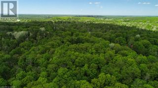 Photo 6: 1832 COUNTY RD. 40 Road in Quinte West: Vacant Land for sale : MLS®# 40154512