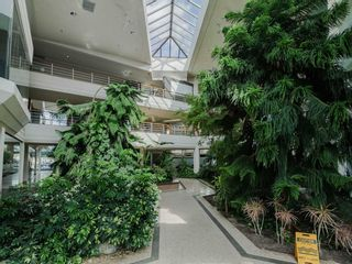Photo 6: 1550 Enterprise Road in Mississauga: Northeast Property for sale : MLS®# W5161295