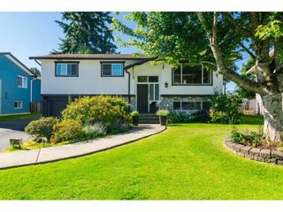 Photo 1: 11482 85 Avenue in Delta: Annieville House for sale (N. Delta)  : MLS®# R2186367