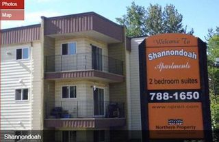 Photo 3: 8 Buildings - 214 Units in Cheywynd: Multi-Family Commercial for sale (Chetwynd, BC)