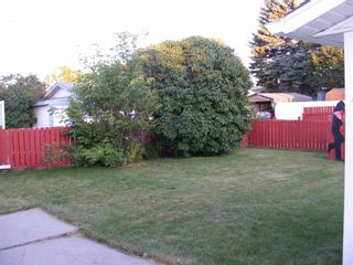 Photo 22: 39 DOVER MEADOW Close SE in Calgary: Dover Detached for sale : MLS®# A1021166