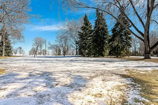 Photo 24: 184 MAPLE COURT Crescent SE in Calgary: Maple Ridge Detached for sale : MLS®# A1080744