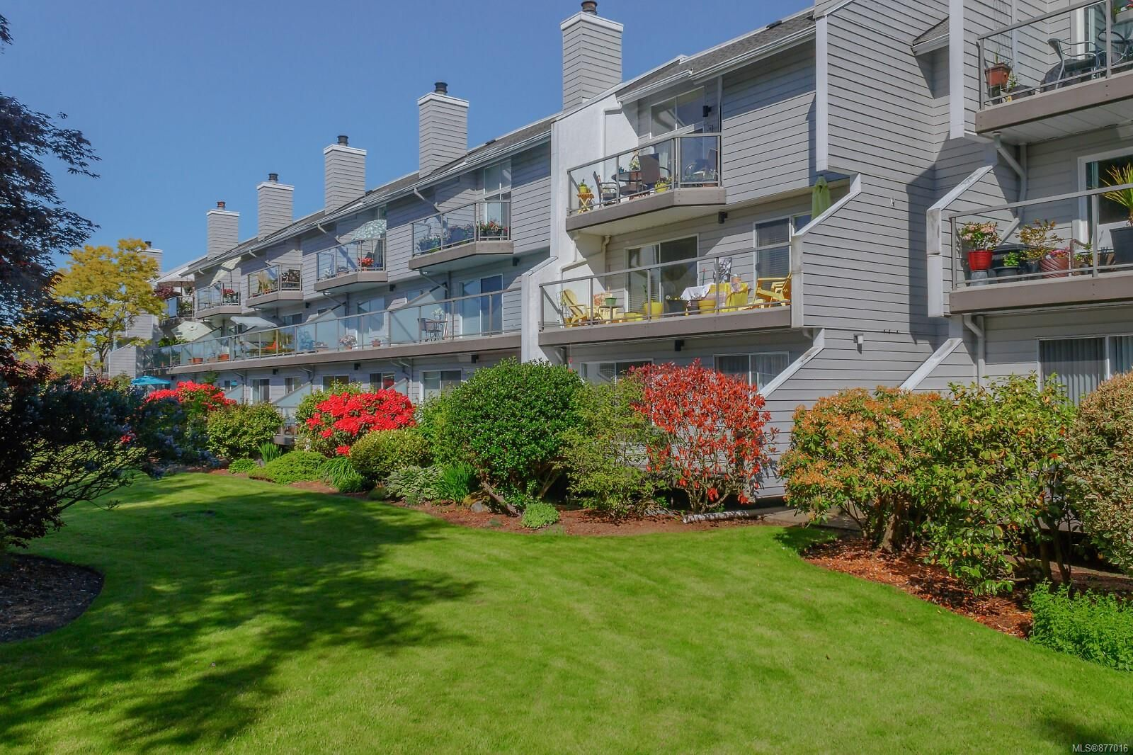 Main Photo: 111 10459 Resthaven Dr in : Si Sidney North-East Condo for sale (Sidney)  : MLS®# 877016