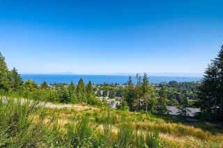 Photo 9: 5179 Dewar Rd in : Na North Nanaimo Unimproved Land for sale (Nanaimo)  : MLS®# 867185