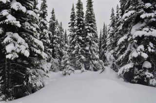 """Photo 2: 217 PRAIRIE Road in Smithers: Smithers - Rural Land for sale in """"Hudson Bay Mountain Resort"""" (Smithers And Area (Zone 54))  : MLS®# R2545464"""