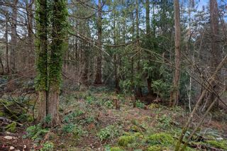Photo 36: 1340 laurel Rd in : NS Deep Cove House for sale (North Saanich)  : MLS®# 867432