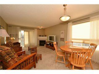 Photo 11: 208 128 CENTRE Avenue: Cochrane Condo for sale : MLS®# C4048864