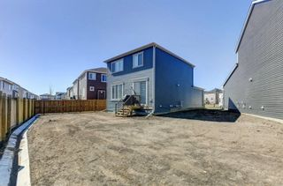 Photo 30: 224 Osborne Green SW: Airdrie Detached for sale : MLS®# A1097874