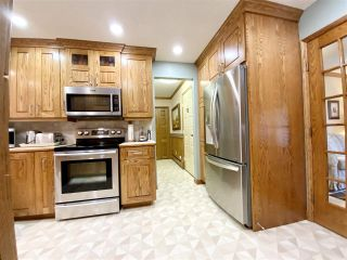 Photo 31: 471028 RGE RD 241: Rural Wetaskiwin County House for sale : MLS®# E4233950