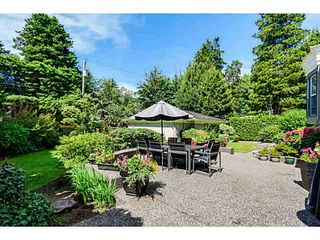 Photo 19: 8061 LABURNUM Street in Vancouver: S.W. Marine House for sale (Vancouver West)  : MLS®# V1076983