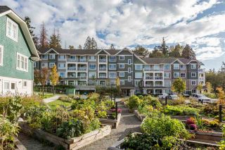 """Photo 19: 314 16388 64 Avenue in Surrey: Cloverdale BC Condo for sale in """"The Ridge at Bose Farms"""" (Cloverdale)  : MLS®# R2213779"""