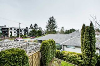 "Photo 25: 214 22255 122 Avenue in Maple Ridge: West Central Condo for sale in ""MAGNOLIA GATE"" : MLS®# R2539586"
