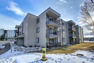 Photo 2: 305 40 Glenbrook Crescent: Cochrane Apartment for sale : MLS®# A1052145