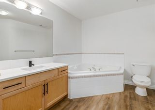Photo 17: 203 2411 Erlton Road SW in Calgary: Erlton Apartment for sale : MLS®# A1125837