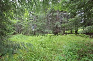 Photo 4: 108 Airstrip Road in Anglemont: North Shuswap Land Only for sale (Shuswap)  : MLS®# 10067018