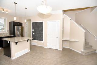 Photo 10: 4110 ALLAN Crescent in Edmonton: Zone 56 House for sale : MLS®# E4249253