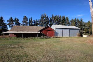 Photo 35: 56113 RGE RD 251: Rural Sturgeon County House for sale : MLS®# E4266424