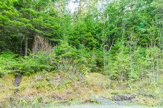 Photo 69: 3,4,6 Armstrong Road in Eagle Bay: Vacant Land for sale : MLS®# 10133907