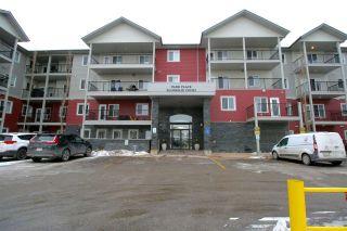 Photo 15: 229 111 EDWARDS Drive in Edmonton: Zone 53 Condo for sale : MLS®# E4225508