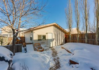 Photo 31: 14 Royal Birch Grove NW in Calgary: Royal Oak Detached for sale : MLS®# A1073749