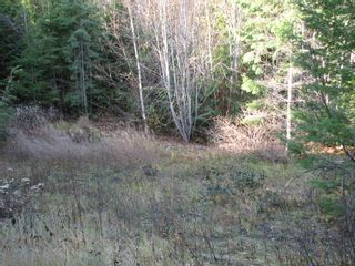 Photo 13: Lot 1 Trans Canada Hwy: Sorrento Land Only for sale (Shuswap)  : MLS®# 10171991