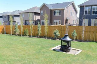 Photo 44: 130 Nolanshire Crescent NW in Calgary: Nolan Hill Detached for sale : MLS®# A1104088