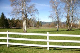 Photo 15: 21 McManus Road: Grindrod House for sale (Shuswap Region)  : MLS®# 10114200