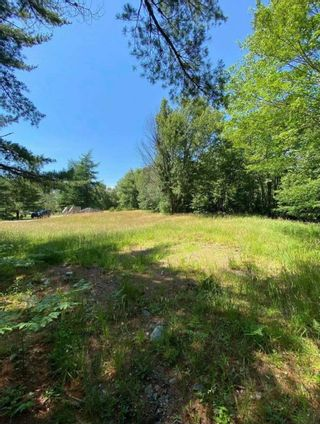 Photo 6: 27 Winslow's Road in Lake George: 407-Shelburne County Vacant Land for sale (South Shore)  : MLS®# 202123339