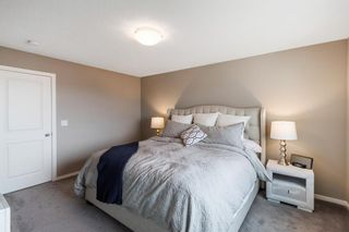 Photo 23: 260 Nolancrest Heights NW in Calgary: Nolan Hill Detached for sale : MLS®# A1117990