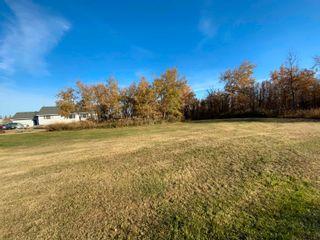 Photo 38: 76 Casa Vista Drive: Rural Sturgeon County House for sale : MLS®# E4266053