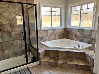Photo 15: 20874 CAMWOOD Avenue in Maple Ridge: Southwest Maple Ridge House for sale : MLS®# R2456758