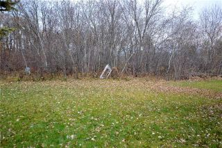 Photo 10: 29 Van Mol Road in St Andrews: Highway Gardens Residential for sale (R13)  : MLS®# 1900027