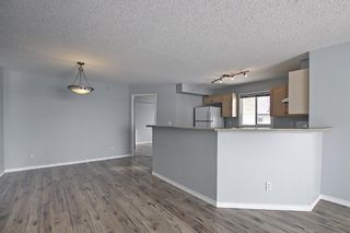 Photo 23: 7402 304 MacKenzie Way SW: Airdrie Apartment for sale : MLS®# A1081028