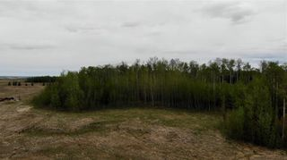 Photo 15: Viewmar Drive: Rural Ponoka County Land for sale : MLS®# C4288523