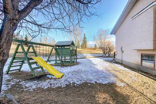 Photo 48: 39 Riverview Close: Cochrane Detached for sale : MLS®# A1079358