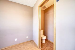 Photo 25: 172 ERIN MEADOW Way SE in Calgary: Erin Woods Detached for sale : MLS®# A1028932