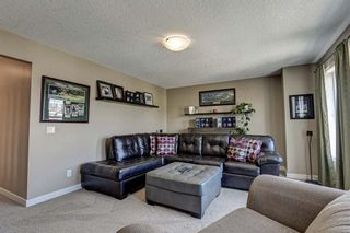 Photo 23: 17 Cranberry Lane SE in Calgary: Cranston Detached for sale : MLS®# A1142868