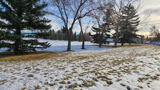 Photo 41: 215 Dalcastle Way NW in Calgary: Dalhousie Detached for sale : MLS®# A1075014