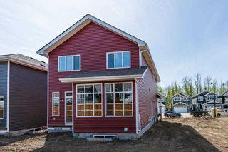 Photo 40: 180 Edgemont Road in Edmonton: Zone 57 House for sale : MLS®# E4261347