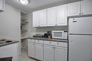 Photo 27: 367 Maitland Crescent NE in Calgary: Marlborough Park Detached for sale : MLS®# A1093291