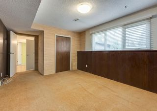 Photo 33: 7308 11 Street SW in Calgary: Kelvin Grove Detached for sale : MLS®# A1100698