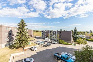 Photo 29: 401C 4455 Greenview Drive NE in Calgary: Greenview Apartment for sale : MLS®# A1052674