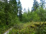 Property Photo: LOT 40 Mountainview  RD in Pender Harbour