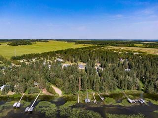 Photo 42: 121 62036 Twp 462: Rural Wetaskiwin County House for sale : MLS®# E4254421
