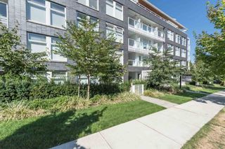 "Photo 17: PH602 4867 CAMBIE Street in Vancouver: Cambie Condo for sale in ""Elizabeth"" (Vancouver West)  : MLS®# R2198873"