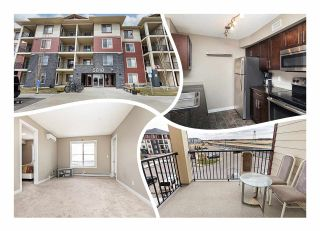 Photo 1: 306 5810 MULLEN Place in Edmonton: Zone 14 Condo for sale : MLS®# E4241982