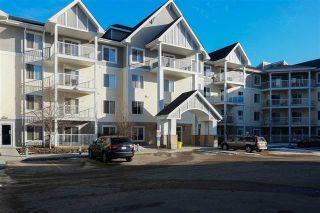 Photo 2: 302 4407 23 Street NW in Edmonton: Zone 30 Condo for sale : MLS®# E4240859